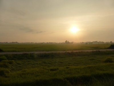 Countryside sunrise viewed from the train
